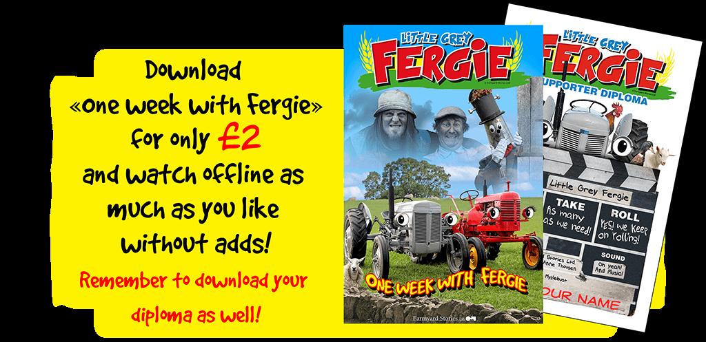 Home - Little Grey Fergie